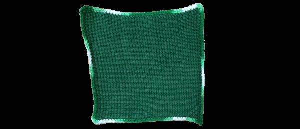Tunisian Crochet Dishcloth (Green)