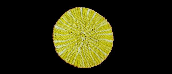 Kitchen Crocheted Dish Cloths – Round (Yellow)